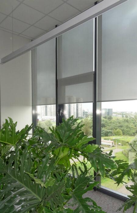 screen rullo žalūzijas birojam