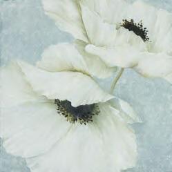 Kanvas glezna 232204246, 70 x 70 cm - Kolekcija: Imag'in Art (Francija)